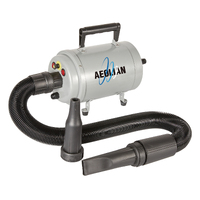 Aeolus Aeolian Blaster / Dryer with Heat