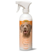 BioGroom Coat Polish
